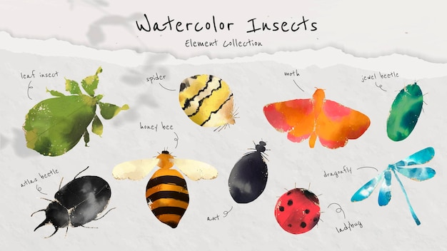 Linda colección de insectos de acuarela