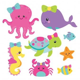 Linda criatura del mar