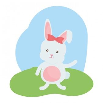 Linda hembra de conejo en el campo