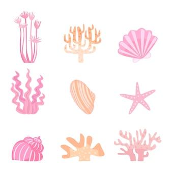 Linda ilustración de concha