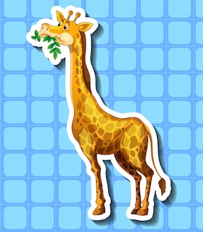 Linda jirafa masticando las hojas