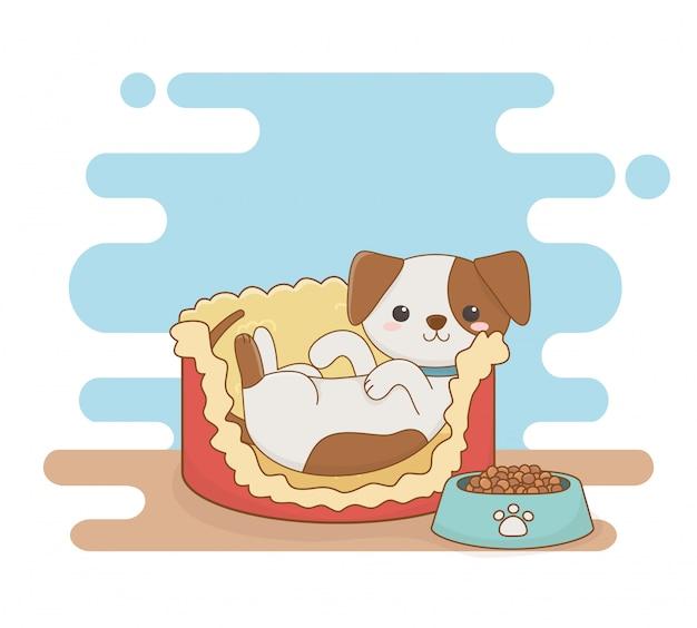 Linda mascota perro pequeño en la cama con comida