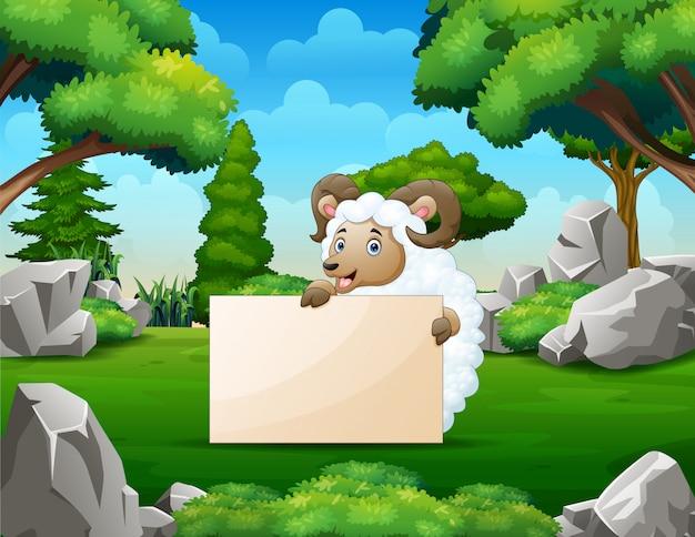 Linda una oveja con un cartel en blanco en el parque