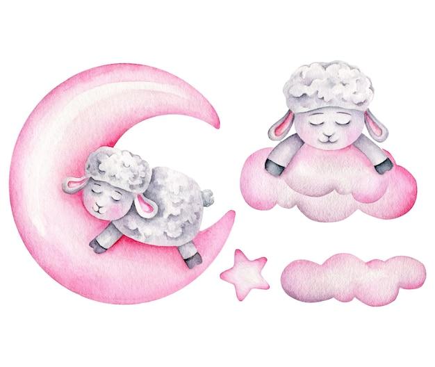 Linda oveja durmiendo