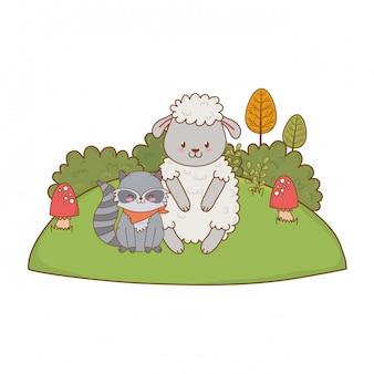 Linda oveja y mapache en el campo