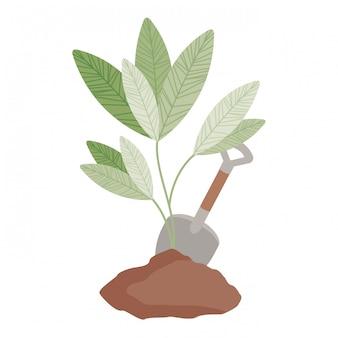 Linda planta de árbol con icono aislado de tierra