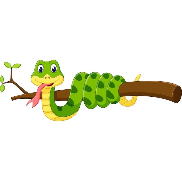 Linda serpiente verde de dibujos animados