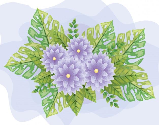 Lindas flores de color púrpura con hojas