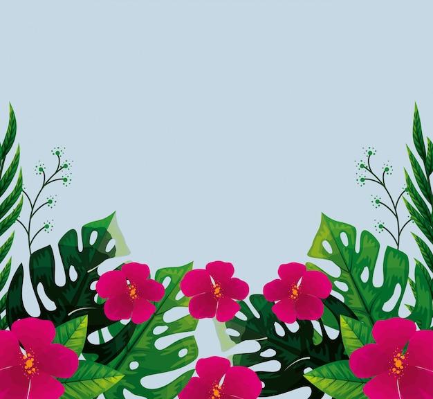 Lindas flores fucsias con hojas tropicales