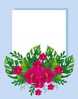 Lindas flores con hojas tropicales