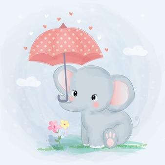 Lindo bebé elefante y paraguas