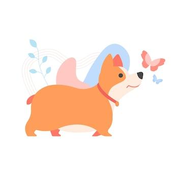 Lindo cachorro de corgi galés. mascota, mascota familiar.