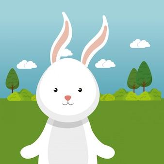 Lindo conejo en el personaje de paisaje de campo