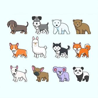 Lindo conjunto de animales