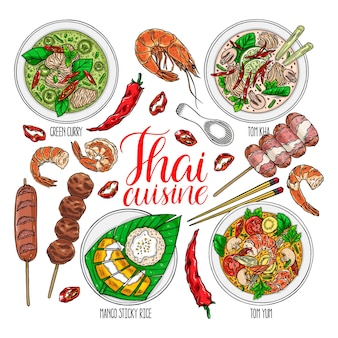 Lindo conjunto de cocina tailandesa. tom yum kung, curry verde, tom kha, arroz glutinoso de mango, camarones y chile. ilustración dibujada a mano