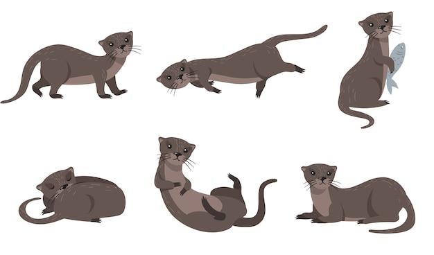 Lindo conjunto de comadreja. dibujos animados de animales en diferentes poses y acciones, nutria sosteniendo peces, durmiendo, caminando, nadando. para la vida silvestre, pieles, concepto de naturaleza.
