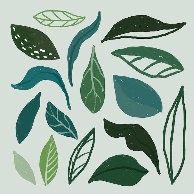 Lindo conjunto de hojas dibujadas a mano
