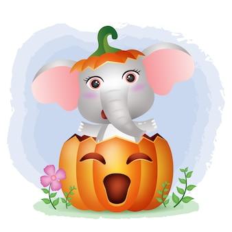 Un lindo elefante en la calabaza de halloween.