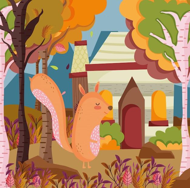 Lindo follaje animal hola otoño