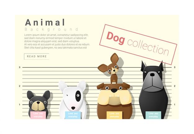 Lindo fondo familiar de animales con perros.