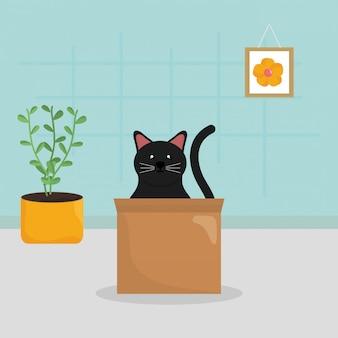 Lindo gatito en caja de cartón