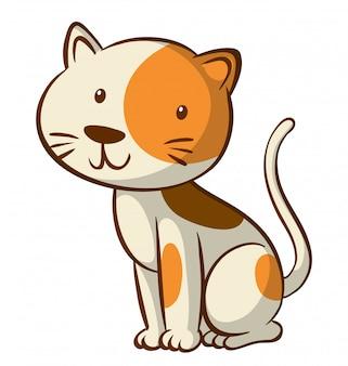 Lindo gatito sobre fondo blanco