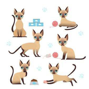 Lindo gatito en varias poses con huellas de patas de gato. gato jugando, comiendo, saltando, estilo plano de dibujos animados.