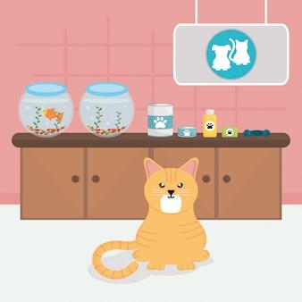 Lindo gatito en veterinaria.