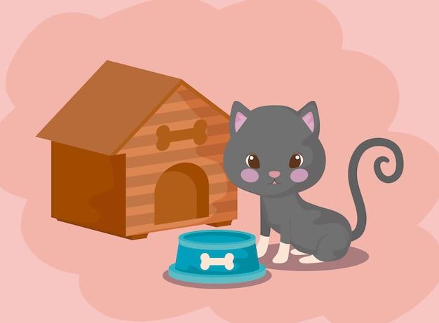 Lindo gato bebé animal con casa