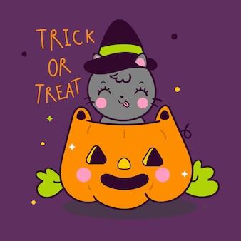 Lindo gato calabaza de halloween