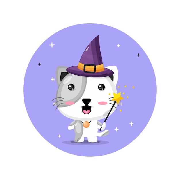 Lindo gato convertido en brujas