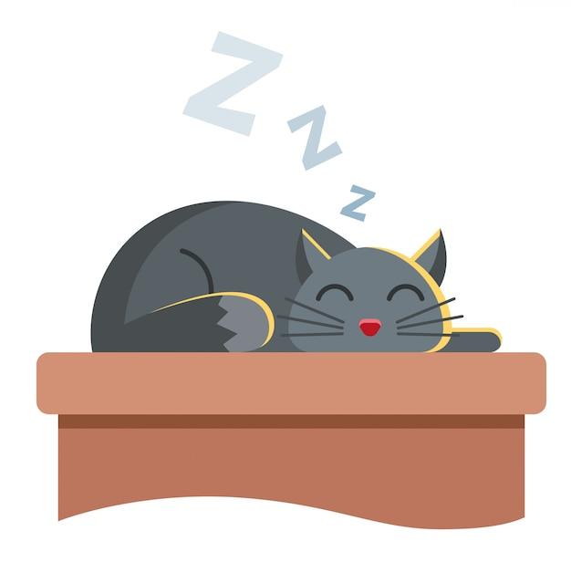 Lindo gato gris yace sobre la mesa y duerme tranquilamente. ronca animal lindo.