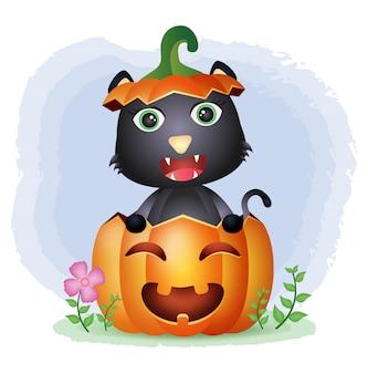 Un lindo gato negro en la calabaza de halloween.