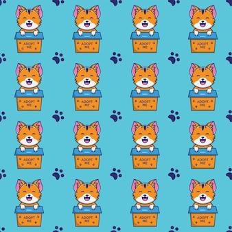 Lindo gato o gatito dentro de una caja con un patrón sin costuras de texto adoptame