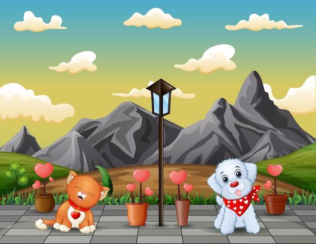 Lindo un gato y un perro en el parque