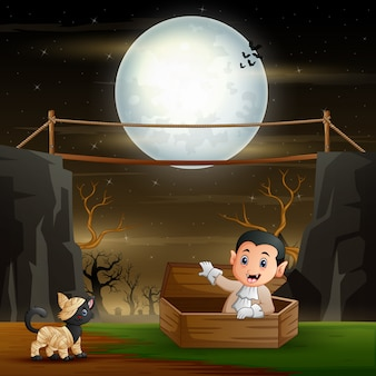 Lindo gato vampiro y momia en paisaje nocturno