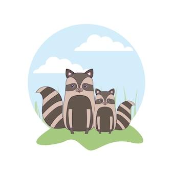 Lindo grupo de mapaches animales en el paisaje