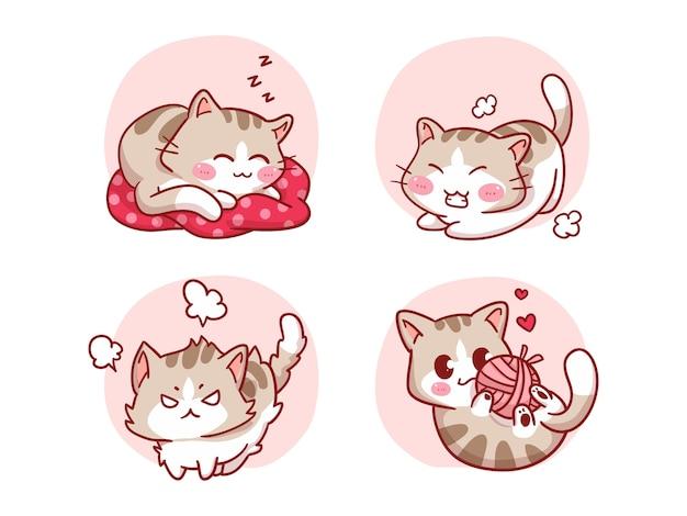 Lindo y kawaii gato durmiendo