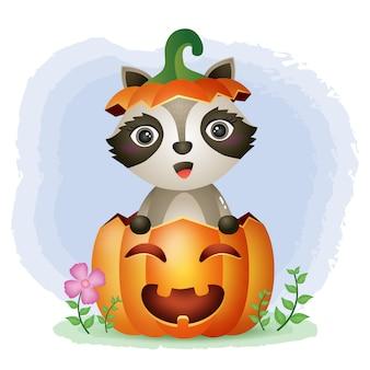 Un lindo mapache en la calabaza de halloween.