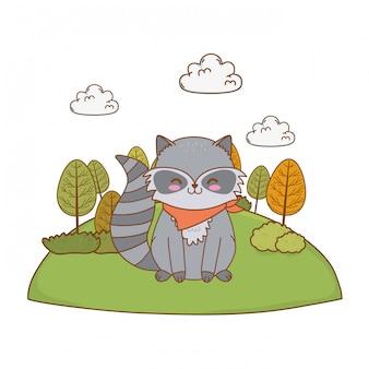 Lindo mapache en el campo arbolado personaje