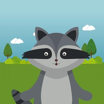 Lindo mapache en el personaje de paisaje de campo