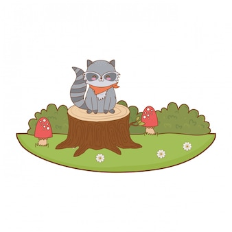 Lindo mapache en el tronco de carácter arbolado