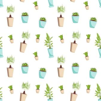 Lindo patrón transparente con plantas de interior en una maceta.