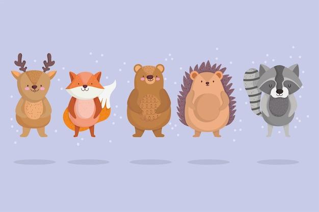 Lindo pequeño reno zorro oso erizo y mapache animal con estrellas en diseño de dibujos animados