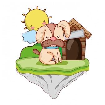 Lindo perro con casa en la isla flotante