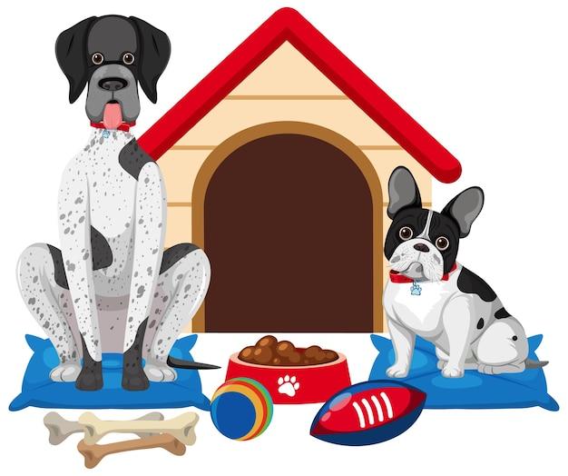 Lindo perro y casa de perro sobre fondo blanco.