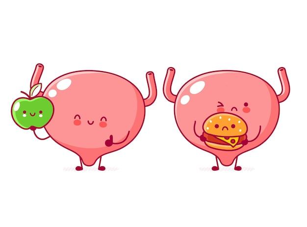 Lindo personaje de órgano de vejiga humana con manzana y hamburguesa
