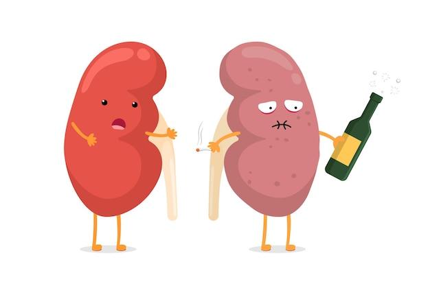 Lindo personaje de riñón enfermo sufrimiento sano y triste con alcohol y cigarrillos. comparación de órganos internos fuertes e insalubres del sistema genitourinario de la anatomía humana. ilustración vectorial