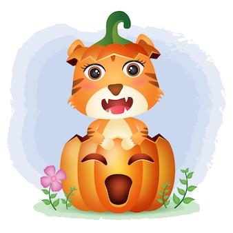 Un lindo tigre en la calabaza de halloween.