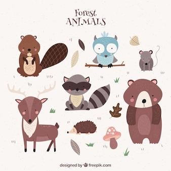 Lindos animales del bosque dibujados a mano